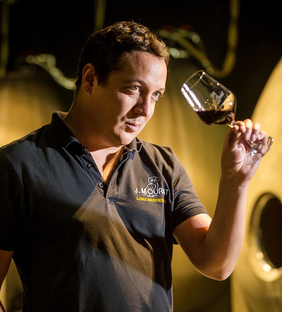Le vin de Mareuil, principale appellation des Fiefs Vendéens