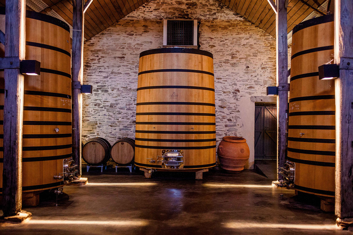 chaix maturation vignoble vin mareuillais fiefs vendéens mourat