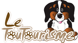 Logo du club du Toutourisme