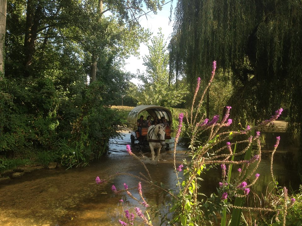 Roulottes-sainte-hermine-85