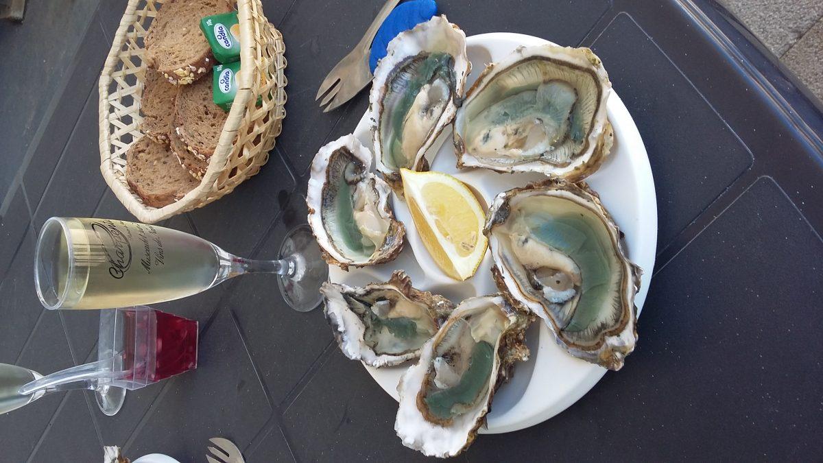 dégustation bar à huîtres