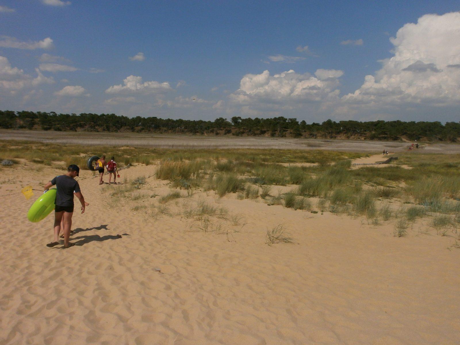 40 accès plage au camping la pavillon bleu à la faute sur mer juillet 2014