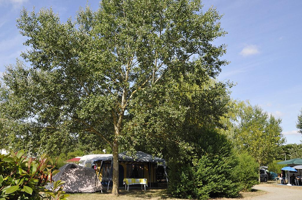 Camping-la-cleroca-Grues-85-HPA (11)