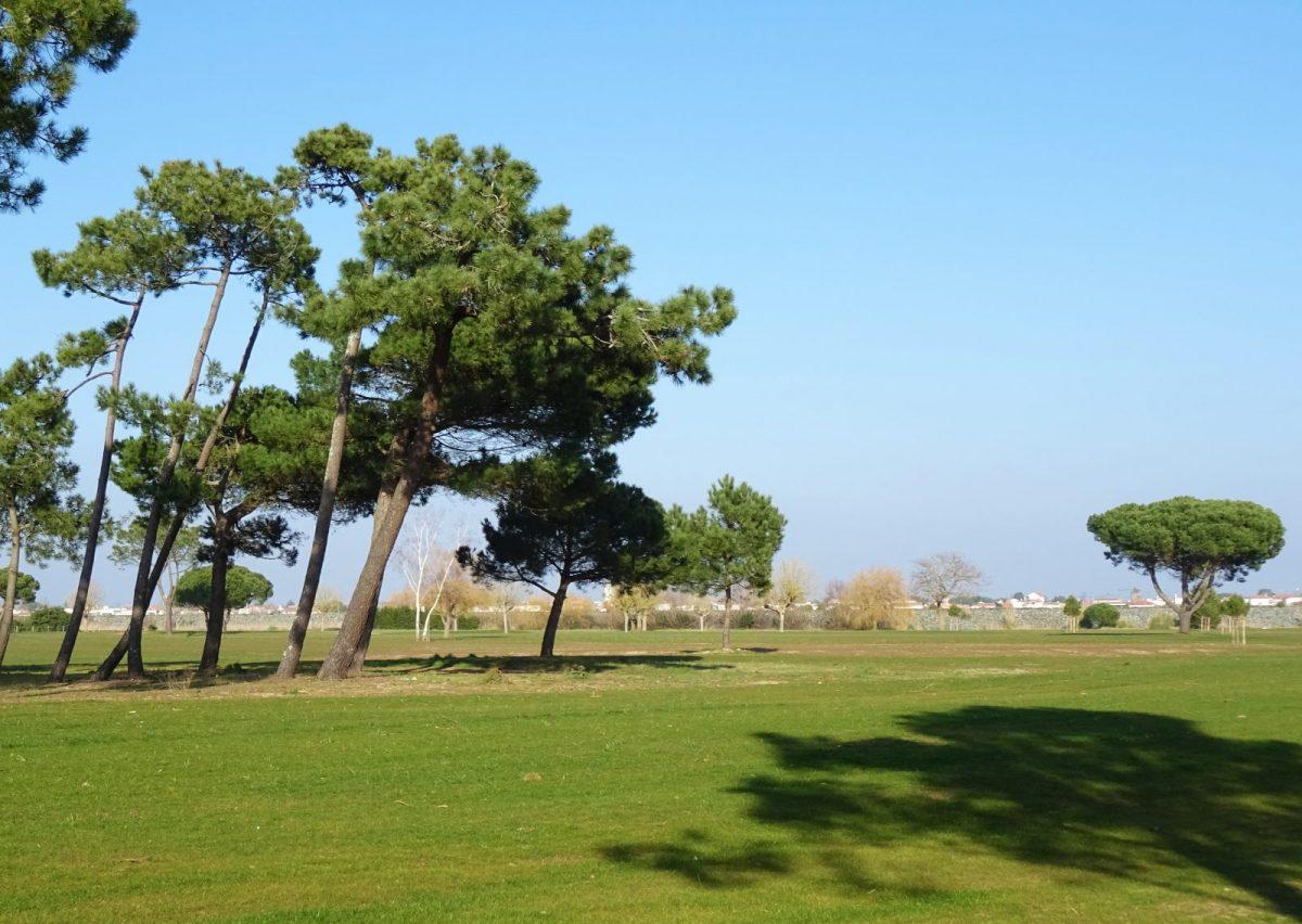 Golf de la Presqu'ile – la Faute-sur-Mer