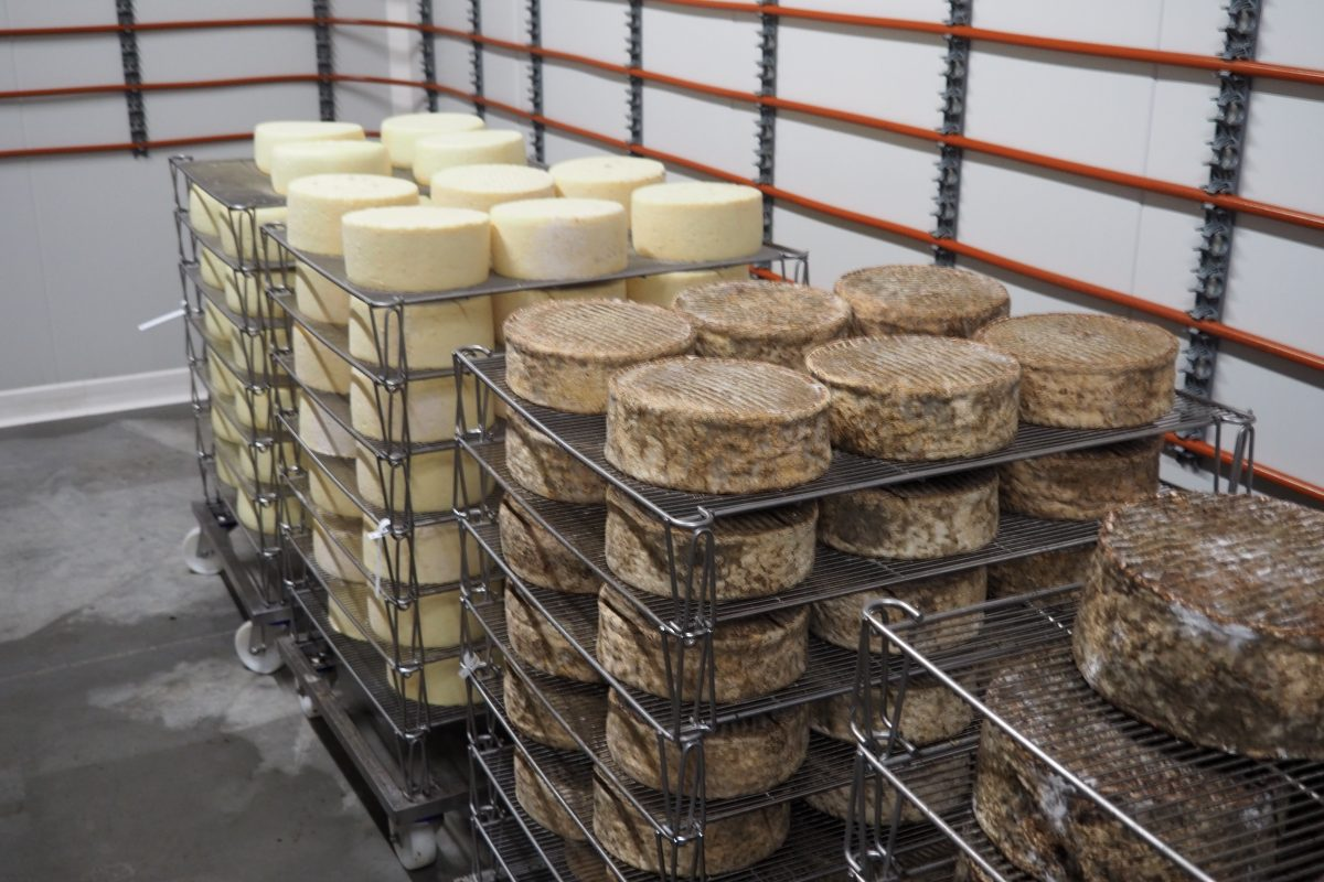 Ferme-Nermoux-Nalliers-fromagerie-fromage