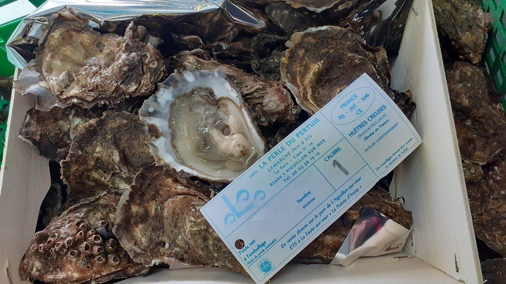 La perle du pertuis-LAMARCHE-L'Aiguillon-sur-mer-85-2