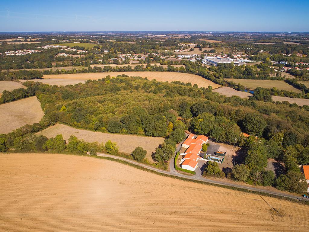 Bois de l'Epault – Mareuil-sur-Lay-Dissais – 85