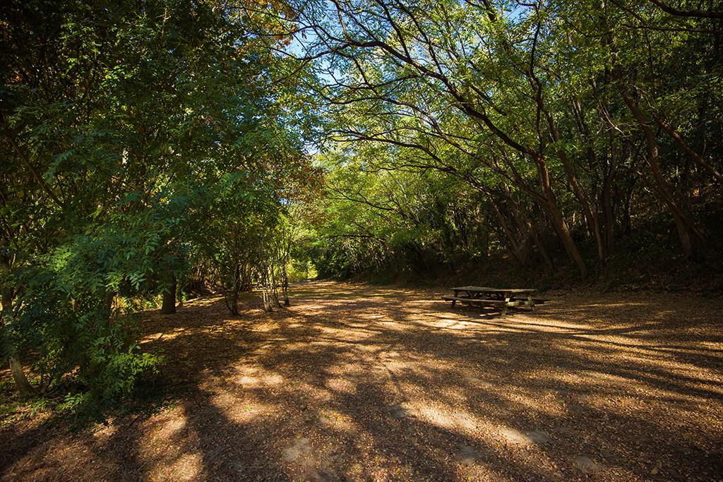 Aire de pique-nique – le Bois des Tours – Mareuil-sur-Lay-Dissais – 85