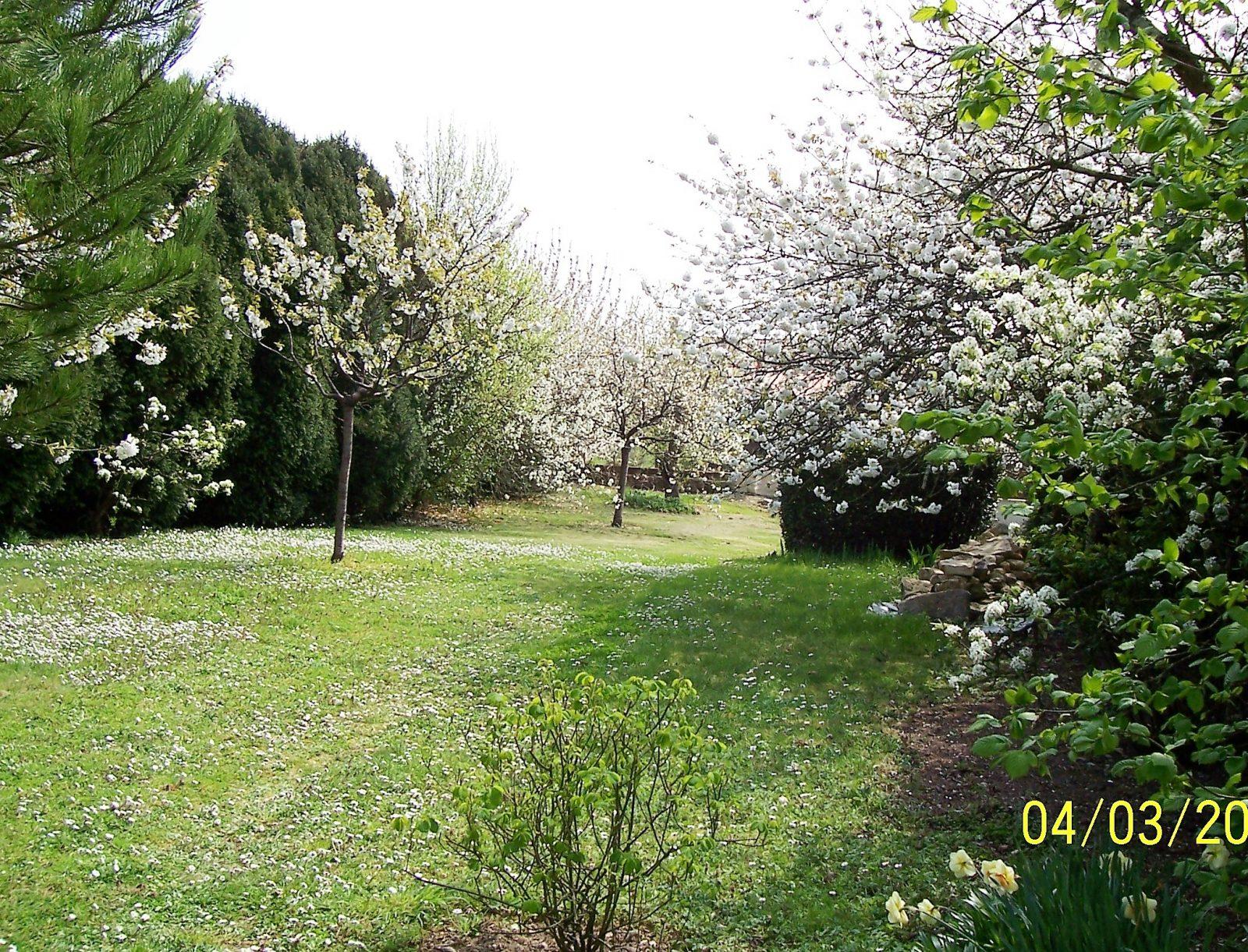 Meublé Dreja – Jardin