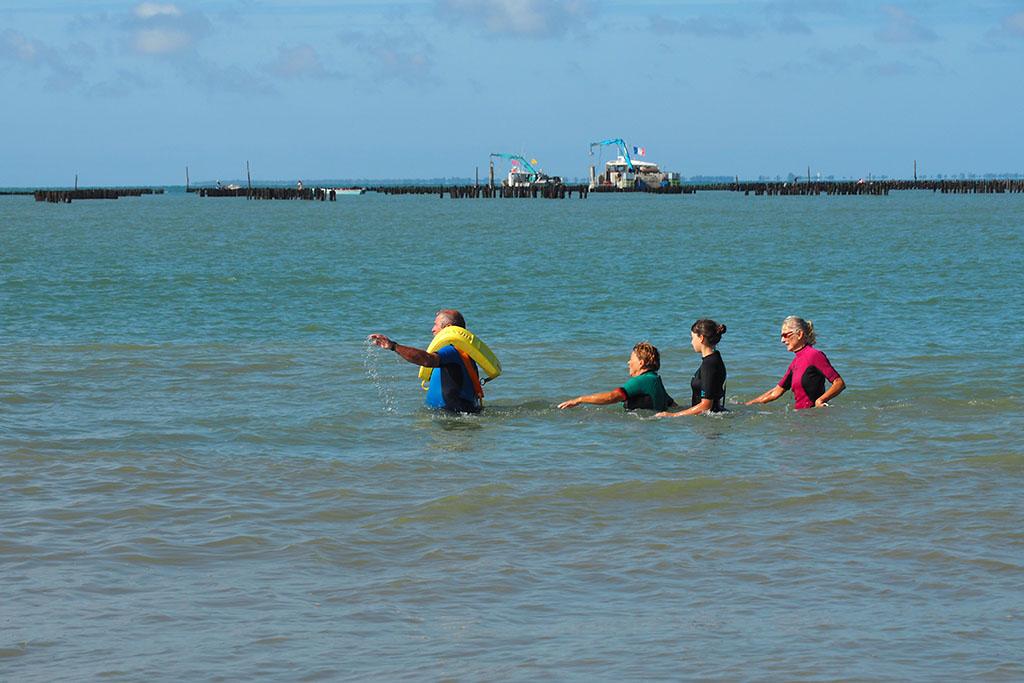 Marche aquatique -longe côte – la Faute-sur-Mer – 85