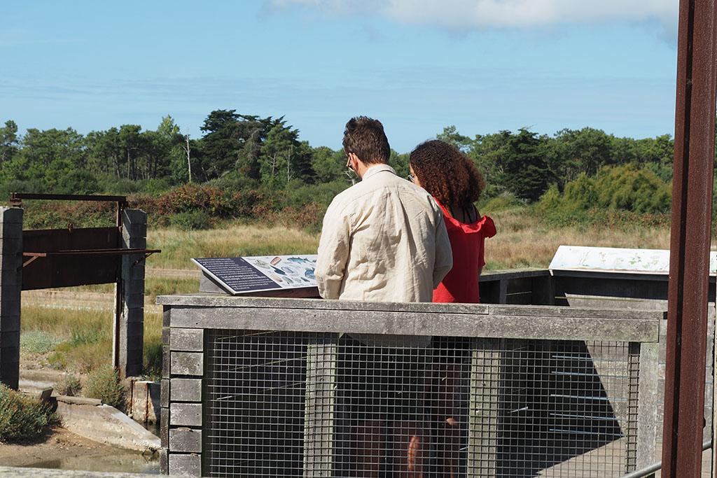 Observatoire de la Rade d'Amour – La Faute-sur-Mer – 85