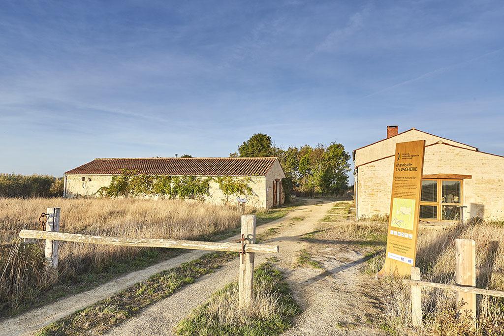 Marais de la Vacherie – Champagné-les-Marais-85