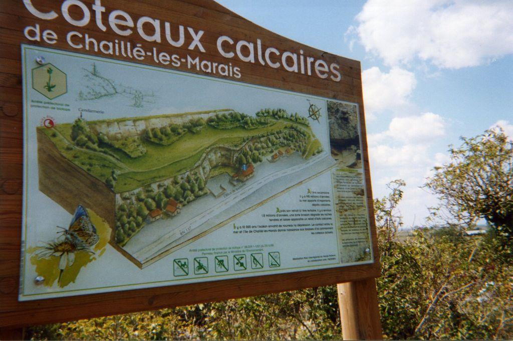 coteau-calcaire-chaille-les-marais-85-pna-1