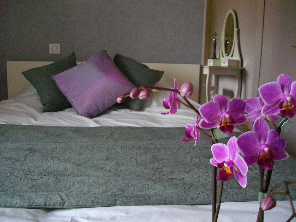 hotel-restaurant-au-fil-des-saisons-lucon-85-hot-1