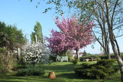 hotel-restaurant-le-mareuillais-jardin-2015-2