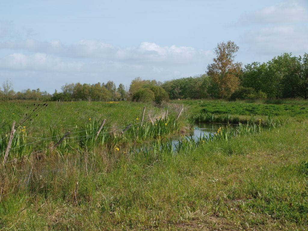 la-boucle-des-polders-triaize-85-2