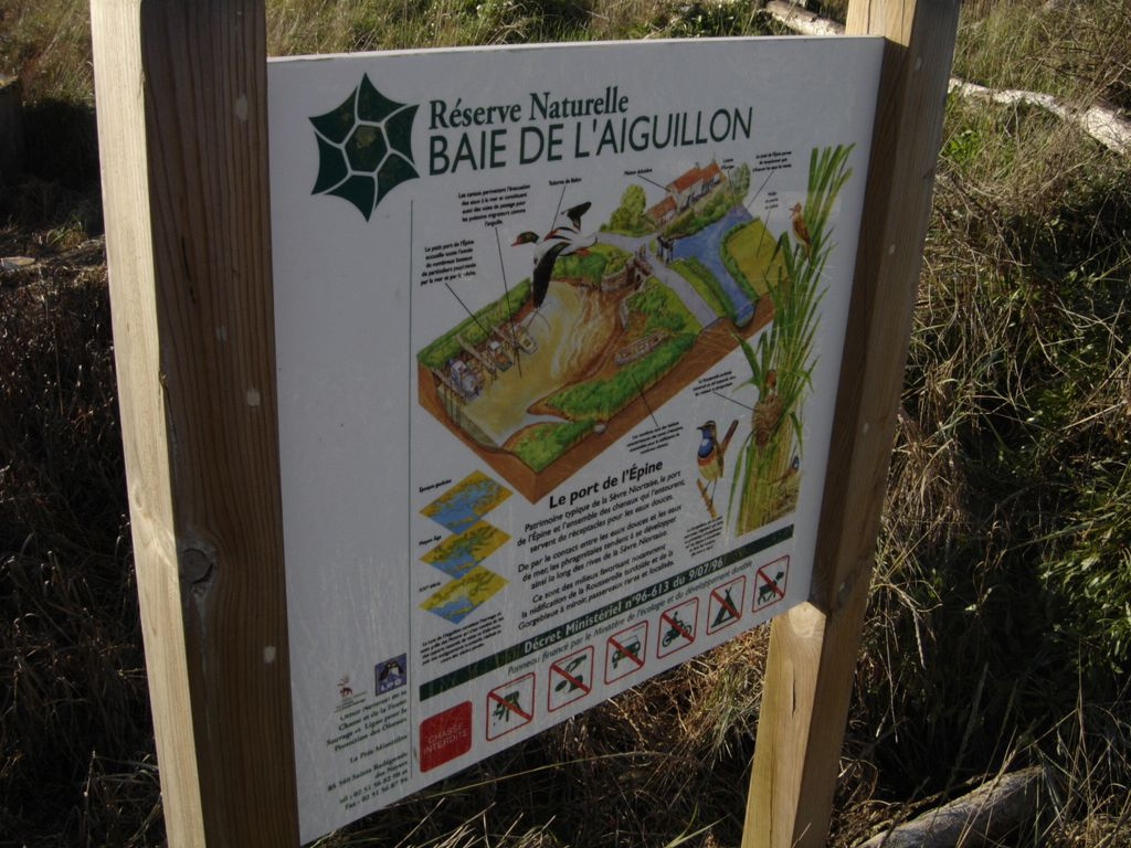 reserve-naturelle-de-la-baie-de-l-aiguillon-sainte-radegonde-des-noyers-85-pna-1